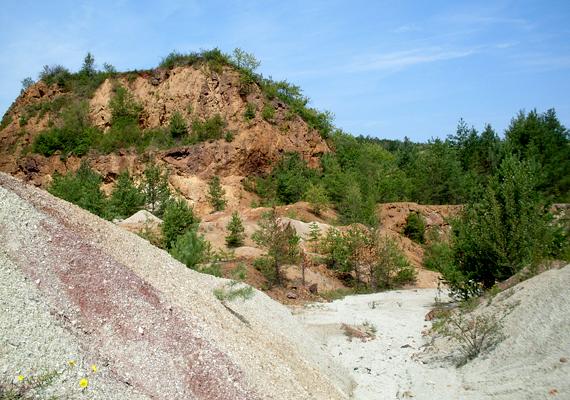 Rudabánya területén már az ókorban is bányásztak vasércet és színesfémet, de szinte teljes történetét meghatározta a bányászat, a 19. és 20. század fordulóján bányaüzeme az egyik legkorszerűbb volt Európában. A vasércbányászatot 1985-ben szüntették be.