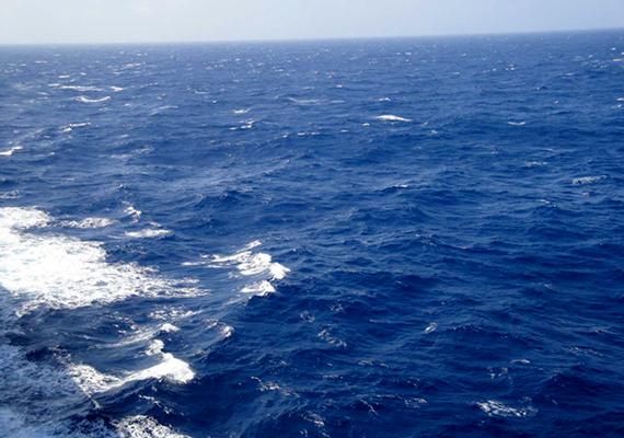 Még magát Kolumbusz Kristófot is zavarba ejtette a tenger, mikor áthajózott rajta, a növényzet és az időjárási körülmények miatt ugyanis azt hitte, hamarosan partot ér. A környékhez kapcsolódó összeesküvés-elméletek bizonyítékaként sokan előszeretettel emlegetik, hogy Sargasso-tengerről megmaradt feljegyzései bizonyos rejtélyes jelenségeket, például repülő tárgyakat is említenek.