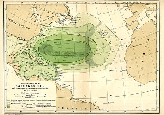 A Sargasso-tenger az Észak-Atlanti-óceánon belül helyezkedik el, partok helyett pedig tengeri áramlatok határolják. Utóbbiaknak köszönhetően megfigyelhető állandó forgása is.