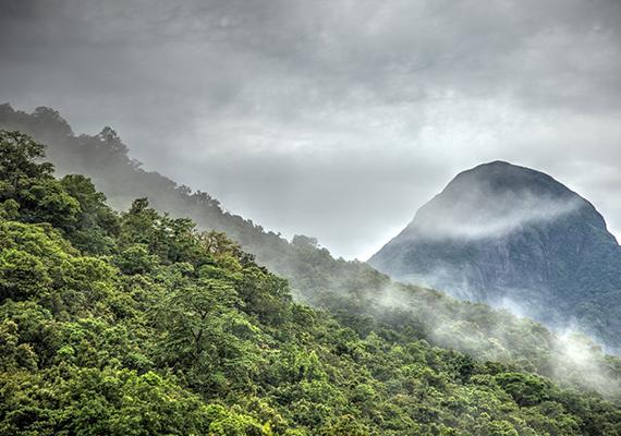 Napsütés Srí Lanka központi hegyvidékének sűrű erdőségei felett.
