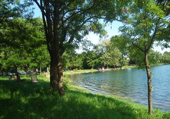 A Mályi-tó fás környéke ideális helyszín, ha nem szeretsz a napon tartózkodni.
