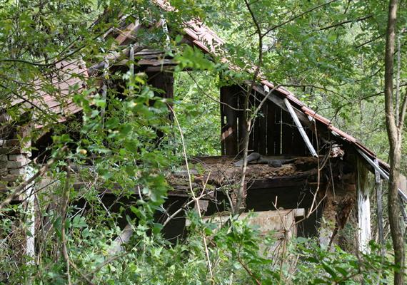 A romos házakat látva szinte hihetetlennek tűnik, hogy egykor csendőrsége, iskolája, boltja, sőt, malma is volt a településnek. Itt tudhatsz meg a faluról többet!