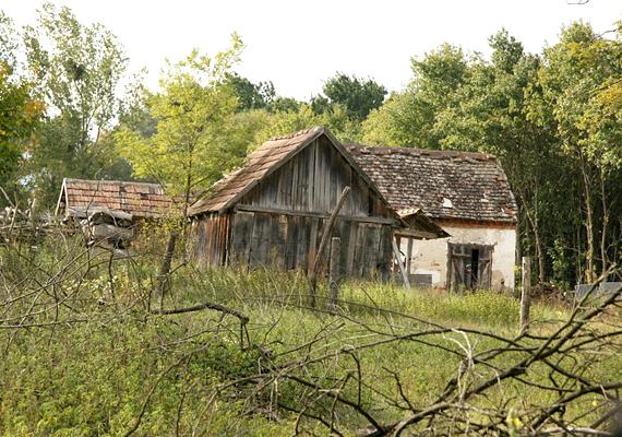 Kakpusztát az 1940-50-es években kihagyták az útépítési és villamosítási programból, így a falu megrekedt a fejlődésben.