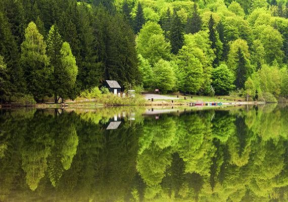 A Csomád-hegység vulkáni kráterében fekvő Szent Anna-tó a Mohos Természetvédelmi Terület része a szomszédságában található másik kráterrel, a Mohos-tőzegláppal együtt.