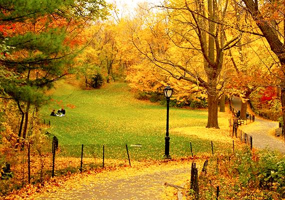 A New York-i ősz olyan a Central Parkban, mintha nem is a valóság, sokkal inkább egy színes festmény lenne.