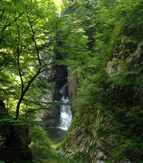 Skocjan  A Világörökség részét képező Skocjan-barlangrendszer Szlovénia délkeleti részén több mint öt kilométer hosszan húzódik a föld alatt. A kétszáz méternél is mélyebb barlangokkal tarkított vidék egykor Európa legfontosabb zarándokhelyének számított, melyről a híres barlangtemplom is tanúskodik.