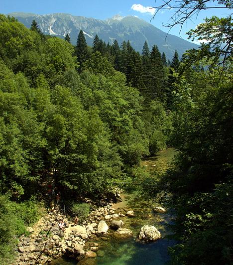 Vintgar-szorosAz 1,6 kilométer hosszú Vintgar-szoros bejárata Bledtől néhány kilométerre északra, a festői Vintgar falucskában található. A Radova-patak által vájt szurdokvölgyet hangulatos fahidak segítségével járhatod be, többek között így juthatsz el a szoros 16 méter magas vízeséséhez is.