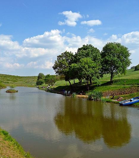 NézsaNézsa egy, az Északi-középhegységben fekvő apró település. Legfőbb büszkesége a Reviczky-kastély, mely a 18. században épült. Az épületet övező angolpark már évek óta védett természeti érték, ahol kellemes sétát tehetsz. A falu határát elhagyva is felemelően szép kirándulóhelyek várnak, hiszen nem messze találhatóak a Csővári-vár romjai, illetve a Szívalakú-tó.