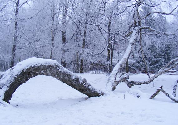 Galyatetőt is elragadta a hó és a fagy, de pont ettől olyan gyönyörű. Itt töltheted le a háttérképet! »
