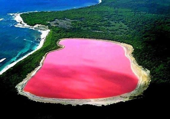 Az 1802-ben felfedezett ausztráliai Hillier-tó rágógumi-rózsaszín színének eredetére máig nincs pontos magyarázat. A hely különösen védett, így tanulmányozására nem korlátlanok a lehetőségek, az alapján azonban, amit tudnak róla, illetve más, hasonló árnyalatú vizekről, több különféle elmélet is született. Van, amelyik mikroorganizmusokról vagy algákról, és olyan is, mely speciális kémiai reakciókról szól. Voltak továbbá, akik azt gondolták, csupán optikai illúzió a látvány, ez az elmélet azonban hamar megdőlt, a víz ugyanis üvegbe töltve is rózsaszín.