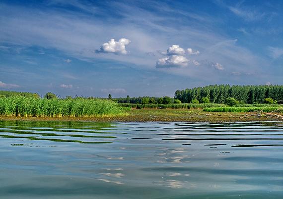 A Tisza-tó kialakulása az 1973-ban létrehozott Kiskörei Erőműhöz és duzzasztógáthoz köthető, melynek egyrészt árvízvédelmi szerepet szántak, másrészt az Alföld megfelelő vízellátásának biztosításához kívántak vele hozzájárulni.