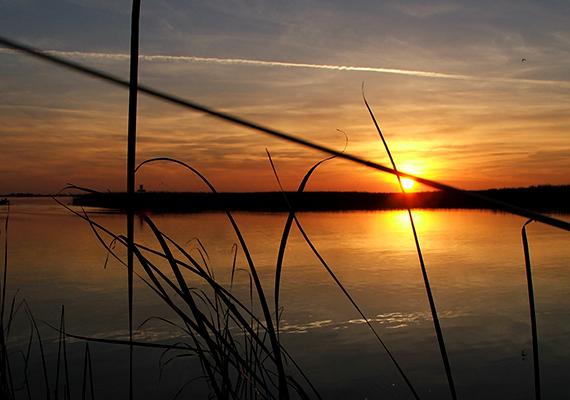 A Tisza-tavi naplemente önmagában is páratlan.