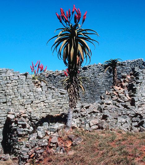 Nagy-Zimbabwe, ZimbabweEgy Afrika szívében virágzó fejlett kultúra nyomaira engednek következtetni Zimbabwében Nagy-Zimbabwe ősi romjai. A habarcs nélkül felépített, hatalmas kőépületek, a Fellegvár, a Nagy Vár, illetve utóbb kúp alakú, ajtók és lépcsők nélküli tornya a kutatók előtt is számos titkot rejt.