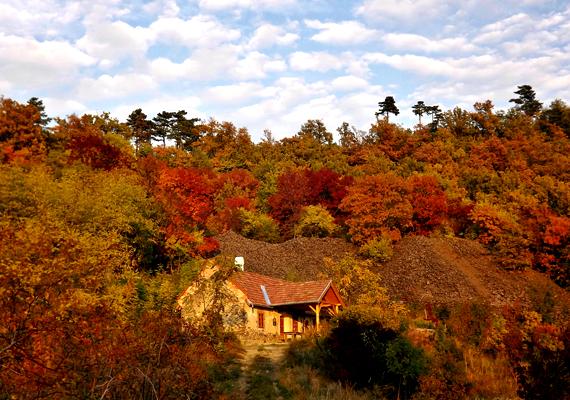 A Hajagos-hegy őszi színei csodálatosak. A nagy felbontású képért kattints ide!