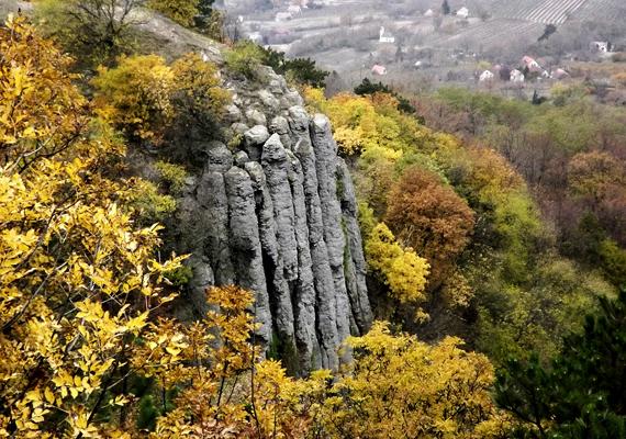 A Szent György-hegy bazaltorgonái az ország legkülönlegesebb természeti látnivalói közé tartoznak. A nagy felbontású képért kattints ide!
