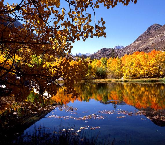 Kelet-Sierra, a Sierra Nevada-hegység középső része vadregényes vidék, színpompás őszi lombkoronákkal. Kattints ide a háttérképért!