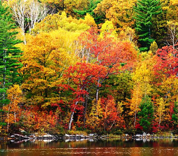 New England Marylandtől egészen Vermont keleti partjaiig őszi lombjairól híres. Kattints ide a háttérképért!