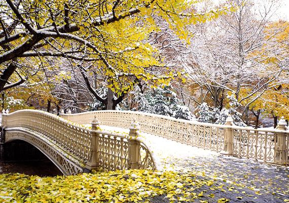 A New York-i Central Park télen is a helyiek nagy kedvence. Kattints ide a nagy felbontású képért!