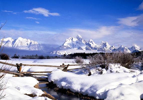 A háttérben látható Grand Teton Amerika egyik legmagasabb hegysége, ami Wyomingban található. Kattints ide a nagy felbontású képért!