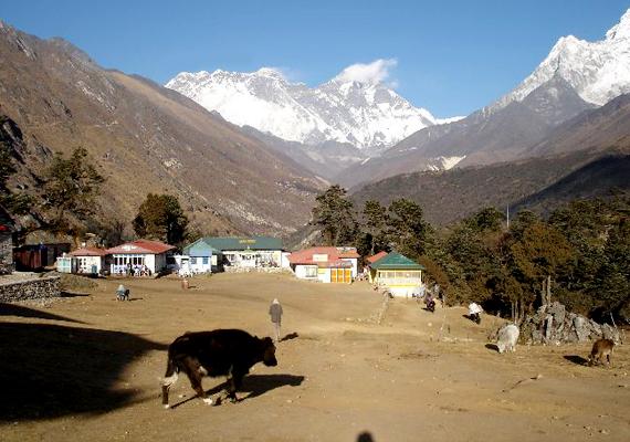 A nepáli Sagarmatha Nemzeti Park akár 12 éven belül is drasztikusan megváltozhat az olvadó gleccserek, valamint az ennek következtében kialakuló áradások miatt.