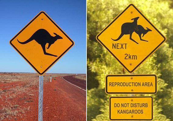 Az ausztráliai tábla a kenguruk párzási területét jelzi a turisták számára, meglehetősen sokat sejtető módon.