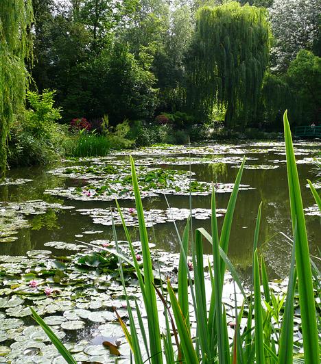 Monet-kert, Giverny, Franciaország A festő, Claude Monet 1883-ban telepedett le Giverny-ben. Normandiai álomkertjének egyik része igazi díszkert, rózsalugasokkal és virágágyásokkal, másik szakasza azonban a zöld híddal és a lilaakác-függönnyel egyfajta vadregényes vízikert - itt születtek többek között Monet híres, vízililiomokról készült tanulmányai.