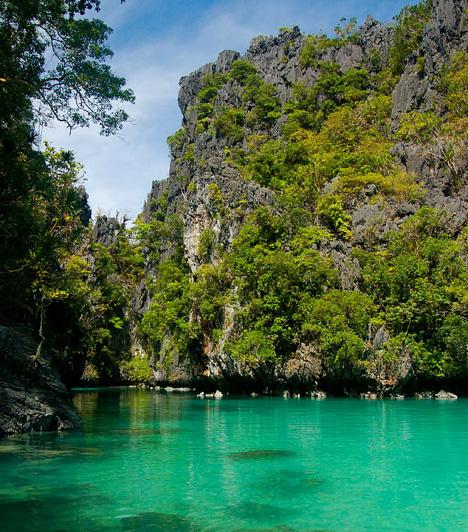 MinilocA Miniloc-sziget egyike a Fülöp-szigetek számos gyönyörű tengerparti nyaralóhelyének és partszakaszának. A dzsungel növényeivel borított hatalmas mészkősziklák, továbbá a lagúnákba befolyó tengervíz - mely így természetes medencéket alkot - azonban még különlegesebbé teszi.