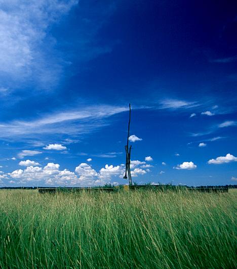 Hortobágyi Nemzeti Park                         A Hajdúság és a Tisza között elterülő híres hortobágyi Puszta Magyarország jelképes tájának számít. Mivel Európa legnagyobb összefüggő, természetes füves pusztája, egyúttal az ember és a természet kétezer éves harmonikus együttélésének kiemelkedő példája, 1999-ben felkerülhetett az UNESCO Világörökségi Listájára.