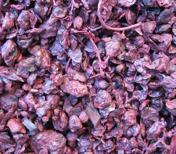 Ebből készül a bor, illetve ebből nyerték ki a mustot, magyarán így fest a cefre.
