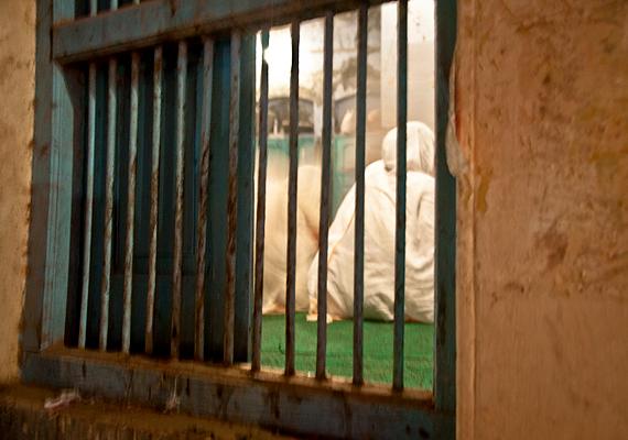 Vannak asramok, melyek vallásos szolgálatért cserébe befogadják őket - énekelniük és imádkozniuk kell napi hét-nyolc órán keresztül -, emellett a humanitárius szervezetek is sokat tesznek értük, de így is csak töredékük ellátása biztosított. Ide kattintva bővebben olvashatsz az őket támogató egyik szervezetről, valamint ellátásuk költségeiről.