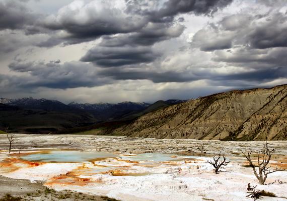 A tudósok rendszeresen végeznek vizsgálatokat a park jövőjét illetően, úgy vélik azonban, pánikra még nincs ok. Ha viszont akár csak közepes erővel is kitörne a vulkán, az felérne egy                         aszterodia becsapódásával, és könnyen okozhatna tömeges fajkihalást, klímaváltozást.