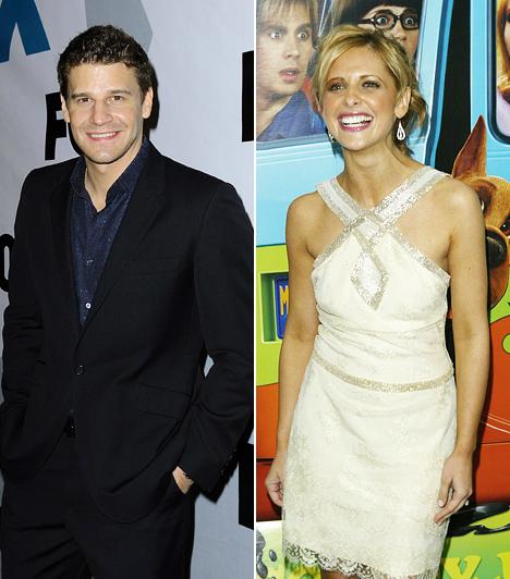 Boreanaz és Gellar  David Boreanaz az Angel 2004-es befejezése óta egy másik sorozatban látható: a Dr. Csontban egy jóképű zsarut alakít. Sarah Michelle Gellar jórészt megmaradt a horrorfilmeknél. Ilyen volt, ilyen lett: David Boreanaz »