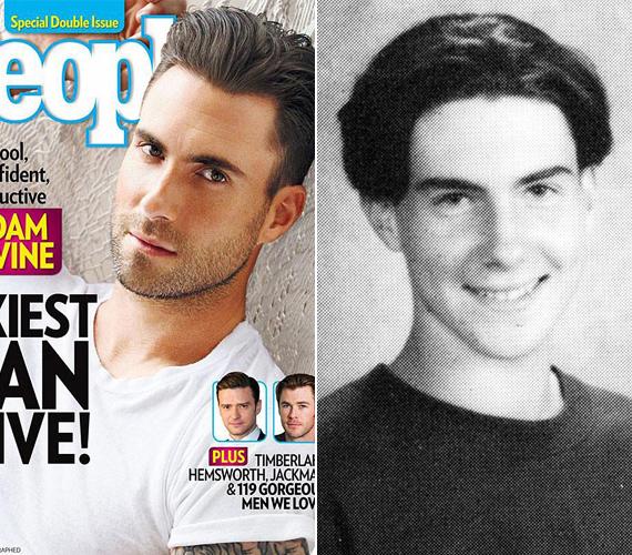 A People magazin 2013 legszexisebb sztárjának választotta meg.