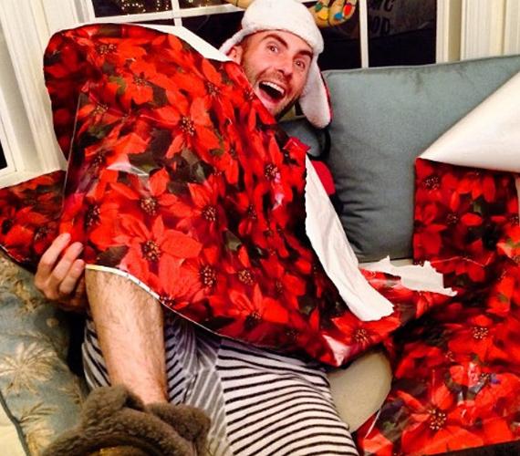 - Megszállt a karácsony szelleme - írta a kép mellé Adam Levine.
