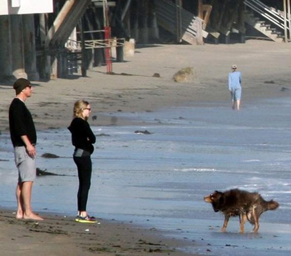A strandon nemcsak a sztárpár, de Josh Hartnett kutyája, Iggy is élvezte a sétát.