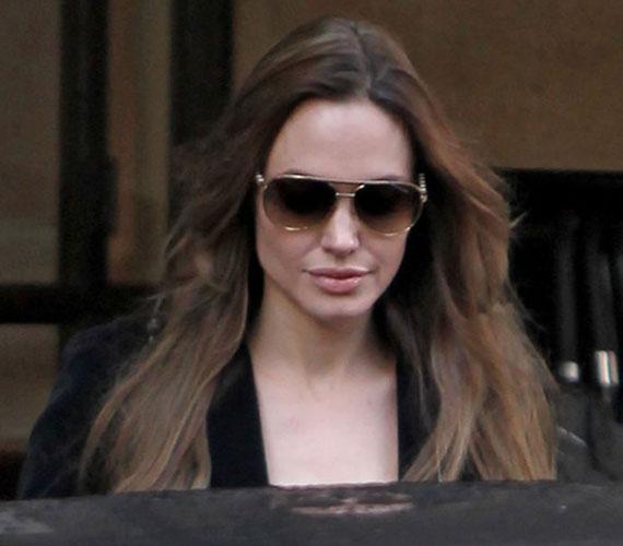 Angelina Jolie a közelmúltban fejezte be az In the Land of Blood and Honey című háborús filmjének rendezését, amelynek 2011. december 23-án lesz az amerikai premierje.