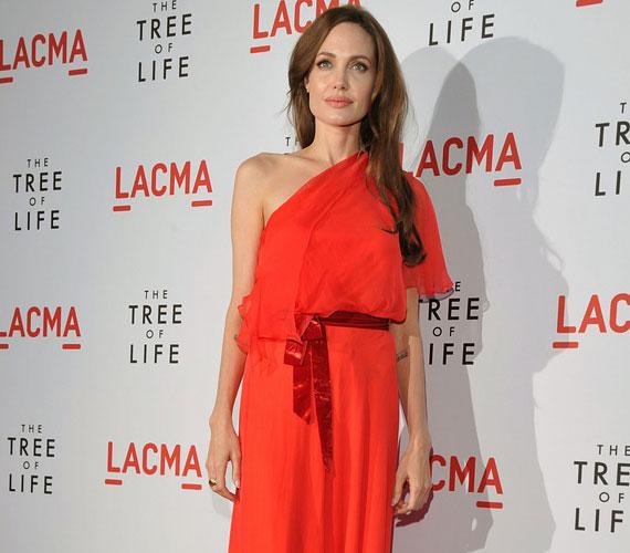 Angelina Jolie szemkápráztatóan gyönyörű volt a premieren vörös ruhájában.