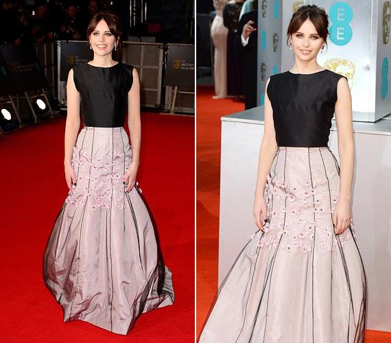 Felicity Jones, a legjobb színésznő kategória jelöltje A mindenség elmélete című filmben nyújtott alakításáért, a Dior Haute Couture és a Van Cleef & Arpels kollekciójának egy darabját választotta a londoni eseményre.