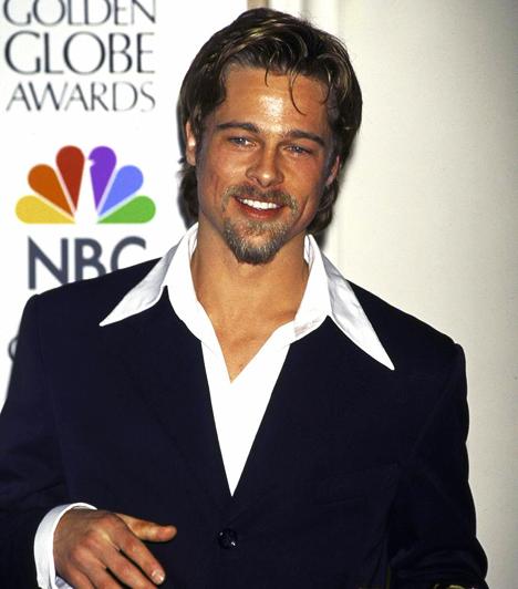 Golden Globe-díj  Pittet öt alkalommal jelölték Golden Globe-ra, és második jelölését váltotta díjra. 1996-ban A 12 majomban nyújtott alakításáért vehette át az elismerést.