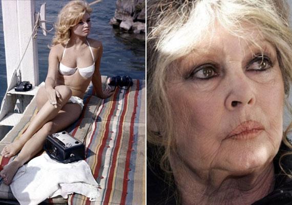 Brigitte Bardot, a férfiak egyik nagy kedvence fiatalon kicsapongó életet élt. Olyannyira, hogy amikor 25 évesen megszülte fiát, Nicolas-t, inkább filmes karrierjére koncentrált, mintsem a családra. Túl fiatalnak tartotta akkor magát az anyasághoz, nem csoda, hogy fiával később sem tudta rendezni kapcsolatukat.