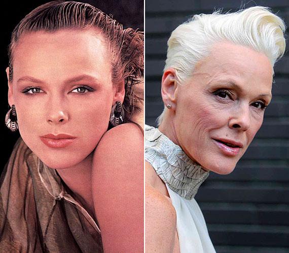 Modellként kezdte karrierjét, majd a film világában is sikert aratott. Az alkohol azonban könyörtelenül nyomot hagyott szép arcvonásain.