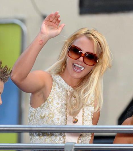 Újra a csúcson  A Pop Hercegnője 2009 nyarán újra a csúcson. 2008-ban Circus címmel a boltokba került hatodik albuma, a megjelenés apropójából pedig világ körüli turnéra indult. Az énekesnő lemezeit 83 millió példányban adták el világszerte, a Forbes pedig 35 millió dollárra becsülte egy évi bevételét.