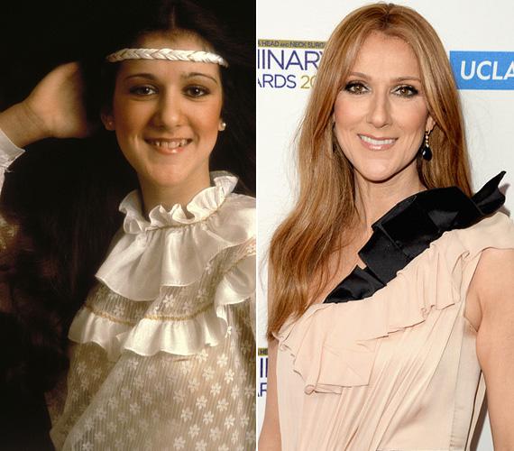 Céline Dion nem volt az a klasszikus szépség fiatalon sem, de róla elmondható, csak szebbé és nőiesebbé vált a korral - most, 47 éves korára érett be igazán.