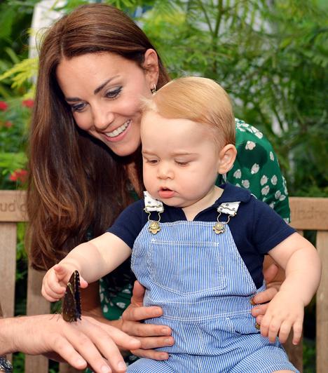György herceg első születésnapja  A kisfiúval valamivel első születésnapja előtt látogattak el büszke szülei egy természettudományi kiállításra.  Kapcsolódó cikk:  4 éve házasodott össze Katalin és Vilmos! - Fotók