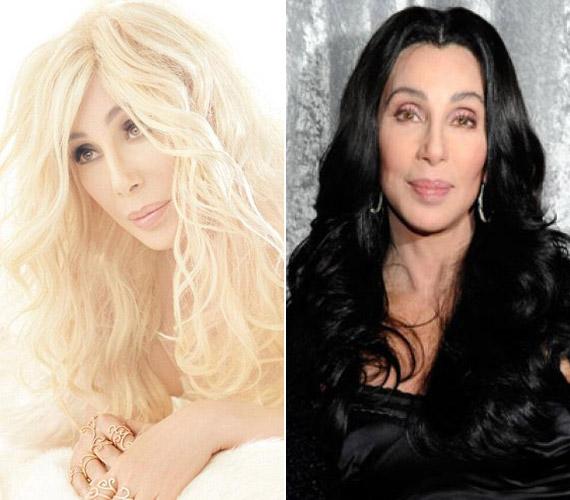 Cher ugyan nagyon felhozta magát, és a Photoshop is sokat javított külsején, a várt siker mégis elmaradt. A rajongók jobban kedvelték régi énjét.