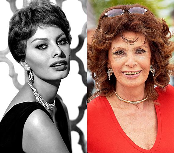 A 81 éves Sophia Lorent szintén a valaha élt legszebb nők között tartják számon. Hírnevét nemcsak mesés külsejének és színészi tehetségének köszönheti, hanem annak is, hogy kiváló anya és feleség volt egész életében. Loren kétszer elvetélt fiai születése előtt, ezért későbbi terhességei alatt vállalta, hogy hónapokig fel sem kel az ágyból.