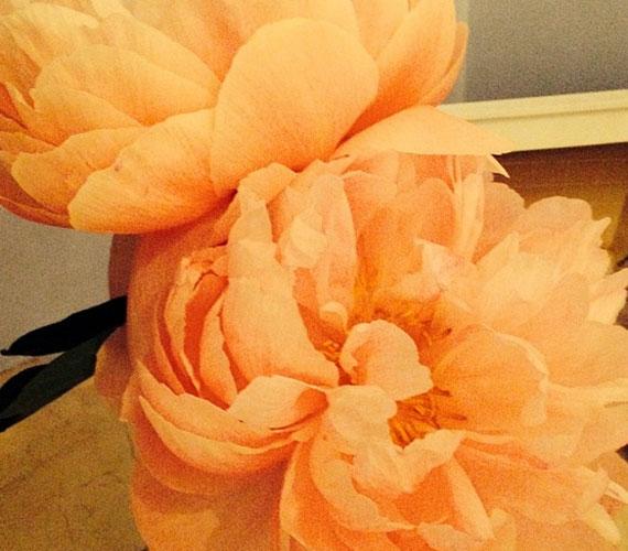 Nem sokkal később a virág színével üzente a világnak, hogy ismét kislányt hord a szíve alatt.