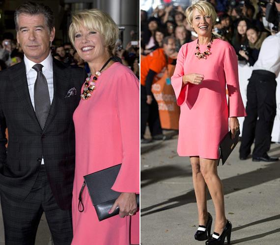 A 2014 januárjában bemutatásra kerülő Love Punch című filmben Pierce Brosnan partnere lesz. Torontóban egy fiatalos, rózsaszín ruhában jelent meg.