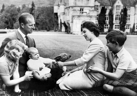 Erzsébet királynő és Fülöp herceg gyermekeikkel, Anna hercegnővel, Károly herceggel és András herceggel játszanak a balmorali kastély zöld gyepén, Skóciában, 1960-ban.