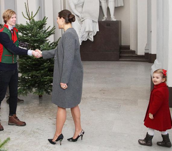 Múlt héten a lassan 3 éves csöppség elkísérte édesanyját a Svéd Agrártudományi Egyetemre, a neves intézmény biztosítja minden évben a királyi család fenyőfáit karácsonyra.